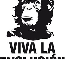 evolution by chiaraegabriele