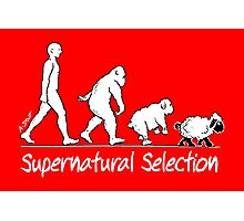 Supernatural Selection (Dark backgrounds) Photographic Print