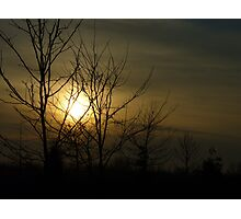 Sunset behind the trees.. Photographic Print