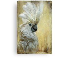 Glamour Girl Canvas Print