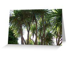 PALM TREES 1 Greeting Card