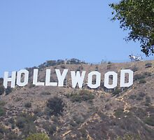 The World Famous Hollywood Sign by DaveM