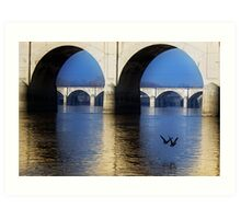 Bridge and Ducks Art Print