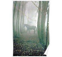 Equestrian Dream Poster