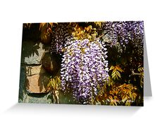 Wisteria Clinging Vine Greeting Card