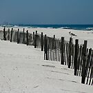 Orange Beach, AL by Jonicool