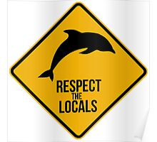 Respect the dolphins Poster
