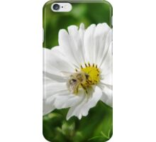 Blond Bee iPhone Case/Skin
