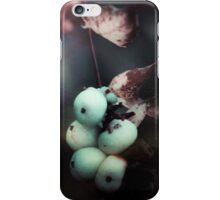 Magic Mushrooms ii iPhone Case/Skin