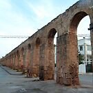 Roman Aqueduct, Tunis by Tom Gomez