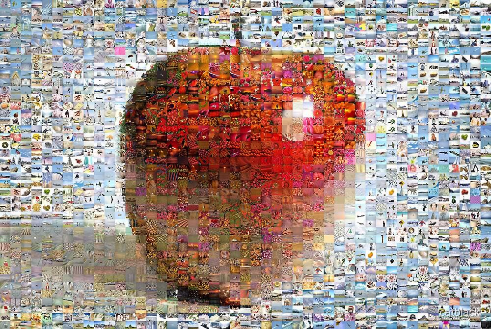 Juicy apple by catblack