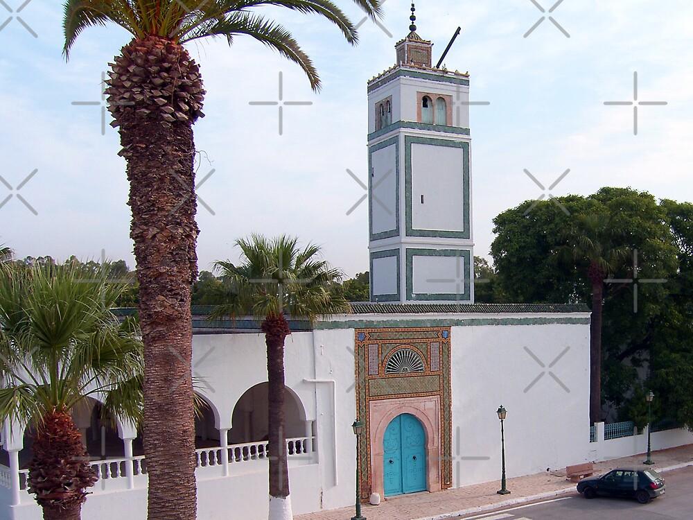 Bardot Mosque, Tunis by Tom Gomez
