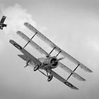 Sopwith Triplane and SE 5 by Steve Churchill
