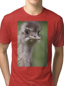 Portrait of a Rhea Tri-blend T-Shirt