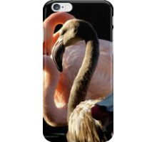 Juvenile Flamingo iPhone Case/Skin