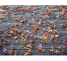 "This is why they call ""Autumn"", ""Fall""! Photographic Print"