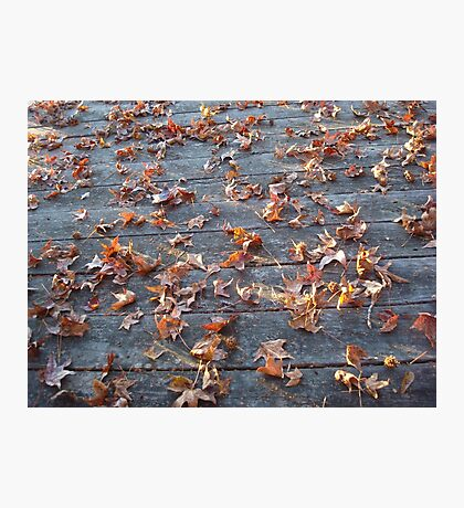 """This is why they call """"Autumn"""", """"Fall""""! Photographic Print"""