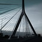 Bridge in Boston MA by Yaroslav  Williams