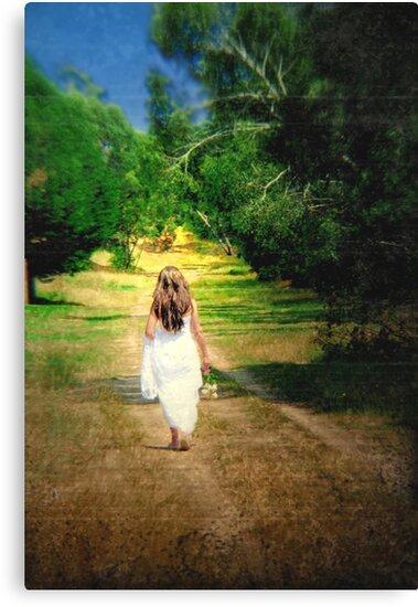 Journey... by Basia McAuley