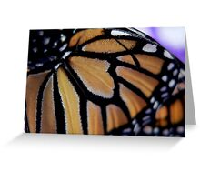 Close-up of a Monarch Butterfly's Wing Greeting Card