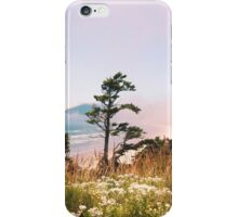 Oregon Coast/ Summer 2014 iPhone Case/Skin