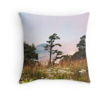Oregon Coast/ Summer 2014 Throw Pillow