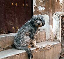 Potosi, Bolivia 4291 by Mart Delvalle