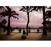 guell Photographic Print