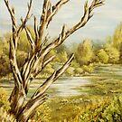 Wetlands by Rasendyll