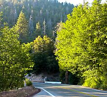 Road Through the Mountains by Bud Walley