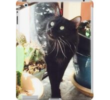 Mr. Mister  Personal Request iPad Case/Skin