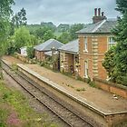Blake Hall Station, Essex, UK by Pauline Tims