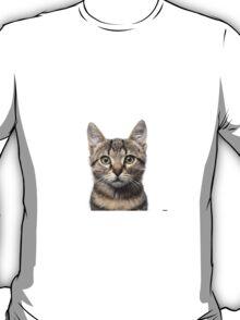 Cat phone case, apparel, stickers, mug T-Shirt