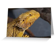 Central Bearded Dragon - Pagona Vitticeps Greeting Card