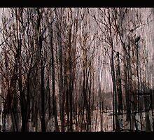 aftermath by Adriana Glackin