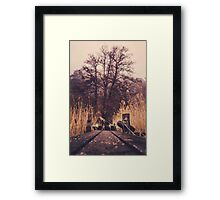 Reach for the sky Framed Print