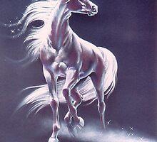 Dark Unicorn by Heidi Schwandt Garner