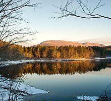 Winter Morning Glow by Nancy de Flon