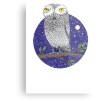 Night Owl Metal Print