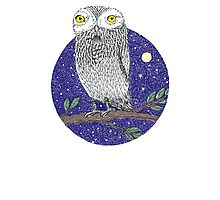 Night Owl Photographic Print