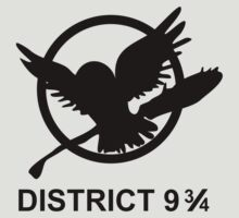 district 9 3/4 by atoprac59