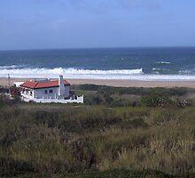 rough sea by lucy cruz