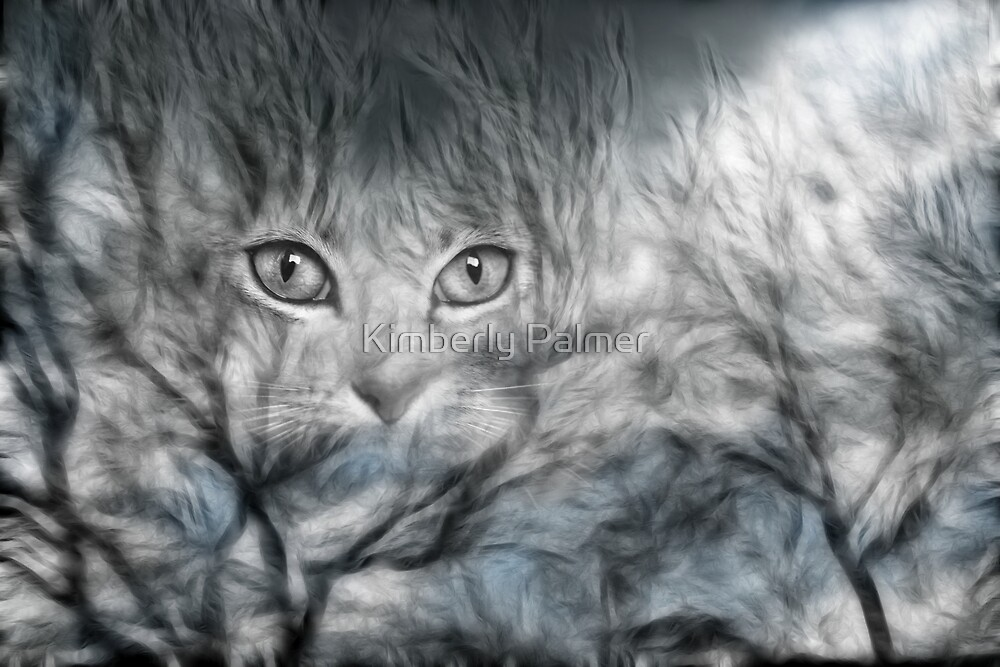 The Eyes by Kimberly Palmer
