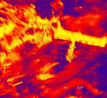 The Dragons Fury by Maureen Zaharie