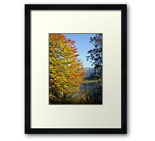 Autumn's touch Framed Print