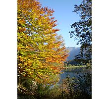 Autumn's touch Photographic Print