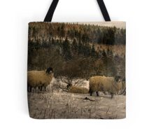 Are Ewe Cold?.... Tote Bag