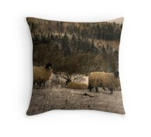 Are Ewe Cold?.... Throw Pillow