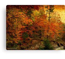 Flattering Fall Canvas Print