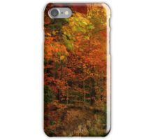 Flattering Fall iPhone Case/Skin